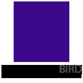Theodore Bird HS
